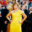 Mariska Hargitay 2008 Emmy Awards