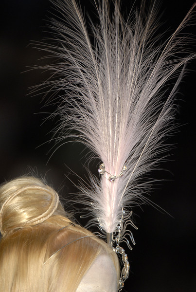 Christian Dior at Couture Fall 2006 (Details)
