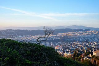 To Take in the View: Bernal Heights Park