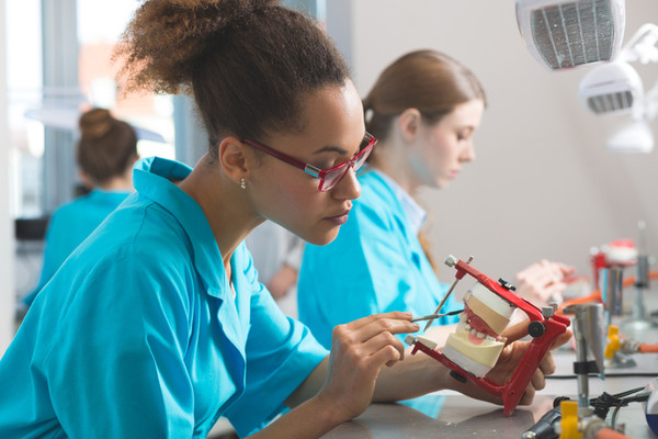 dental majors for college Dr majors doesn't mind being a first choice for second opinions and has done so, for 30 years visit him today in bryan, tx and see why he is a trusted source.