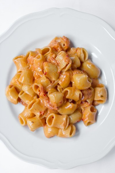 SPICY RIGATONI VODKA – CARBONE (New York)