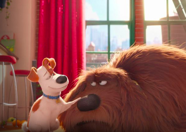 The Secret Life Of Pets 2016 Pg Shows On Netflix Your Whole Family Will Really Love Livingly
