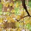 Hanging Pocket Watches