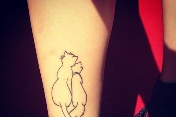 Aristocats Outline