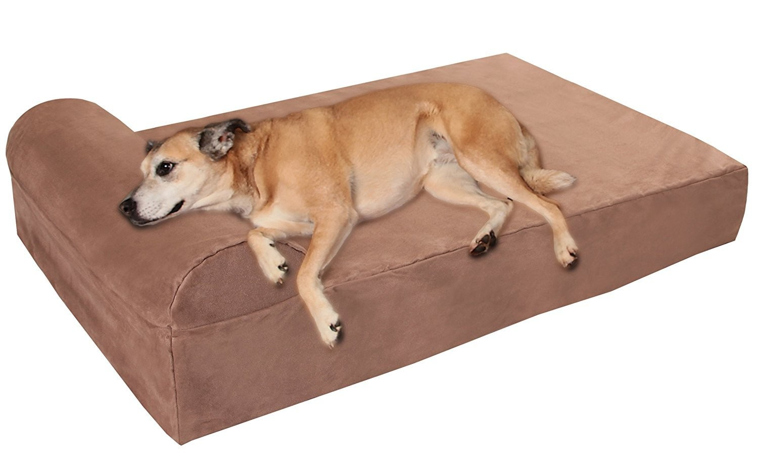 12 of the Highest-Rated Dog Supplies on Amazon That Are Perfect for Your Furry BFF