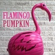 Flamingo Pumpkin
