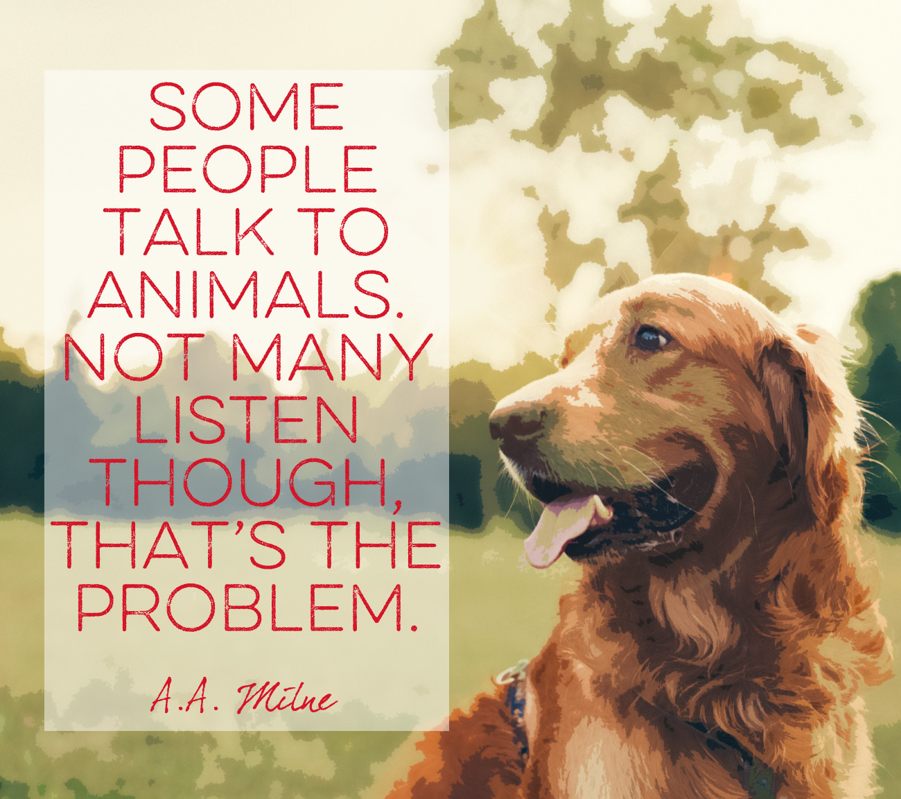 Words By A A Milne Quotes That Will Melt Every Animal Lover S