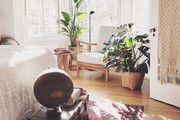 Good Vibes Only — Here's How You Can Cleanse Your Space