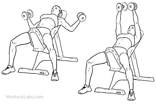 Incline Bench Fly