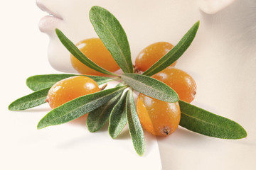 Why Sea Buckthorn Oil Should Be In Your Beauty Bag