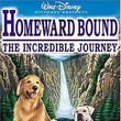 Reading Homeward Bound