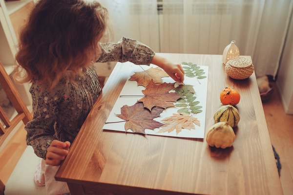 Collect fall leaves for crafts