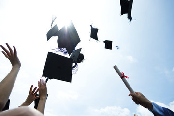 So You're A College Graduate: Now What?