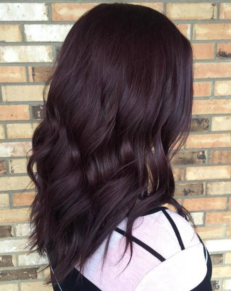 Dark Burgundy Brown