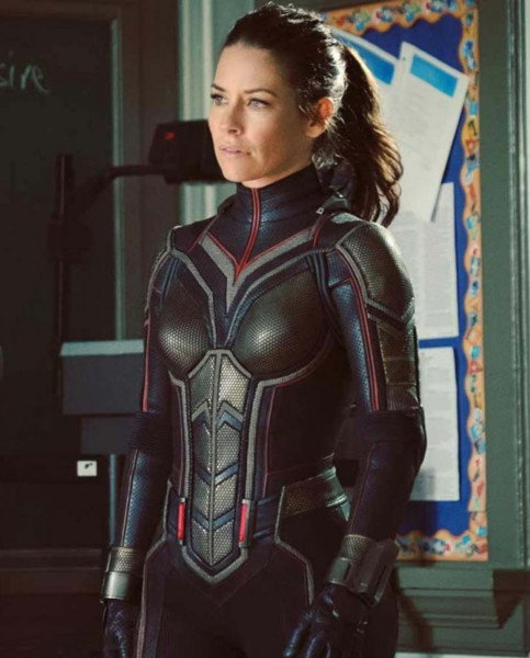 The Wasp (Evangeline Lilly)
