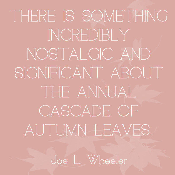 There is something incredibly nostalgic and significant about the annual cascade of autumn leaves. - Joe L. Wheeler