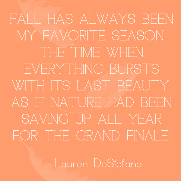 Fall has always been my favorite season. The time when everything bursts with its last beauty. As if nature had been saving up all year for the grand finale. - Lauren DeStefano