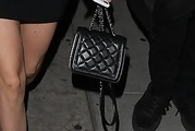 Nicola Peltz Quilted Purse
