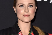 Evan Rachel Wood Ponytail